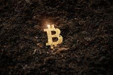 """La """"minería"""" del Bitcoin es desastrosa para el medio ambiente: es hora de que los gobiernos intervengan"""