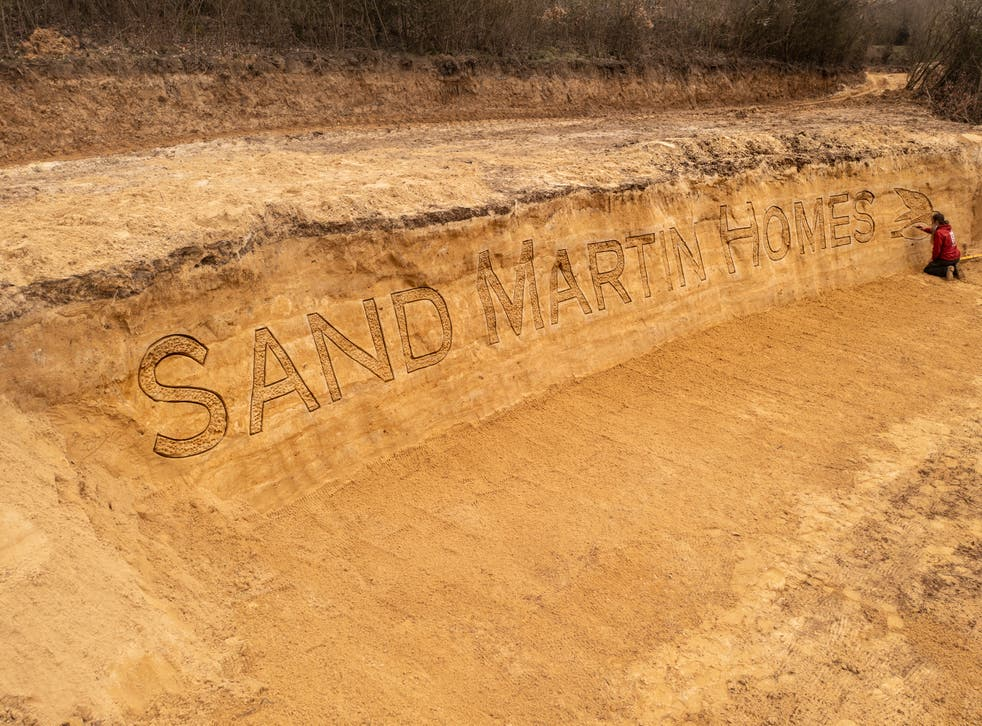 The sand martin sand sculpture