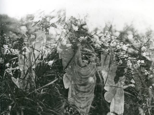 <p>A photograph of the 'real' fairies</p>