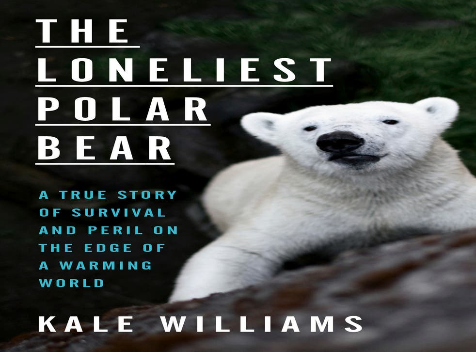Book Review - The Loneliest Polar Bear