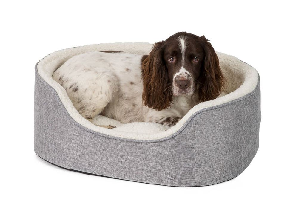 Best Dog Beds 2021 Comfortable Beds For Large Medium And Small Dogs The Independent