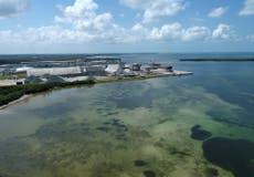 """Piden a residentes de Florida """"Evacuar AHORA"""" por una pared de agua tóxica"""