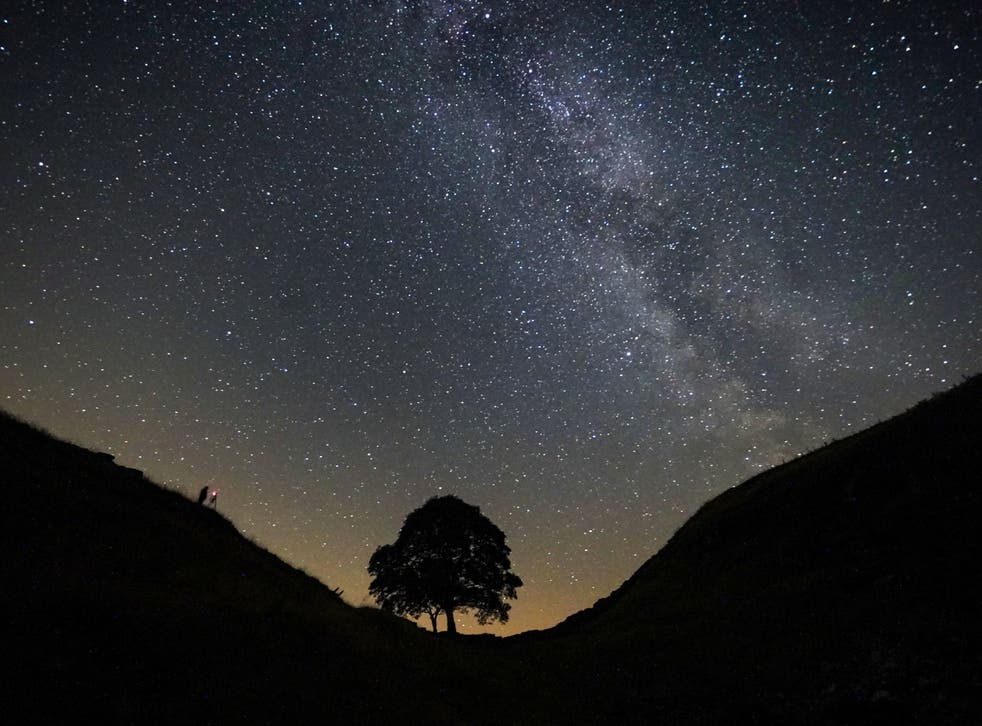 A photographer lining up a shot on a clear night under the Milky Way at Sycamore Gap on Hadrian's Wall in Northumberland