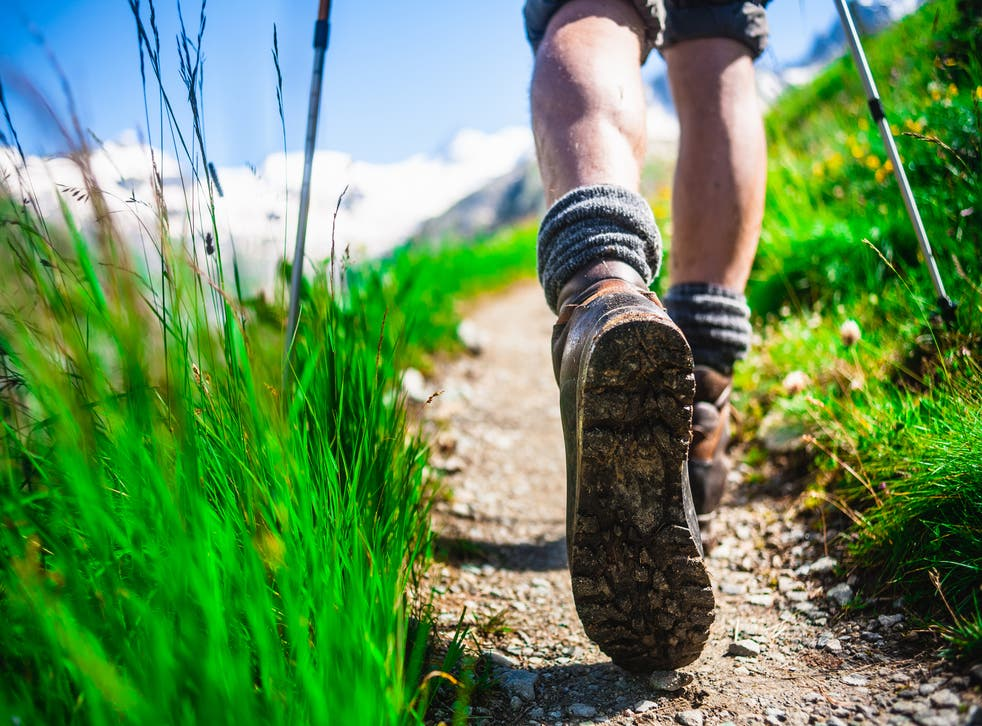 <p>Hiker survives falling 1000 feet in North Carolina mountains</p>