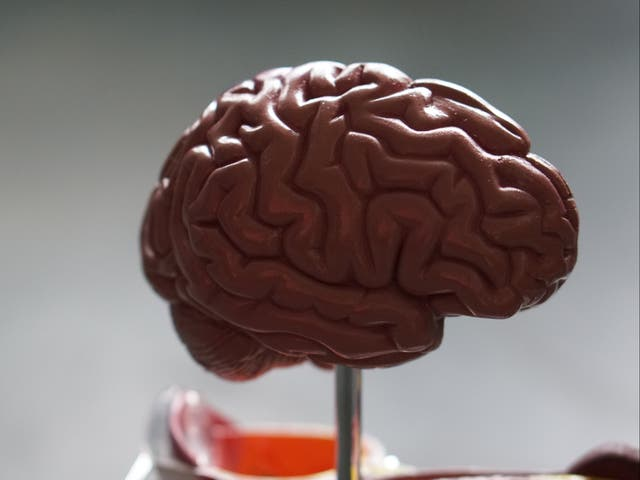 <p>Injuries to the head can have long-lasting repercussions on an individual's cognition and behaviour as well as making people less able to cope with feelings of anger</p>