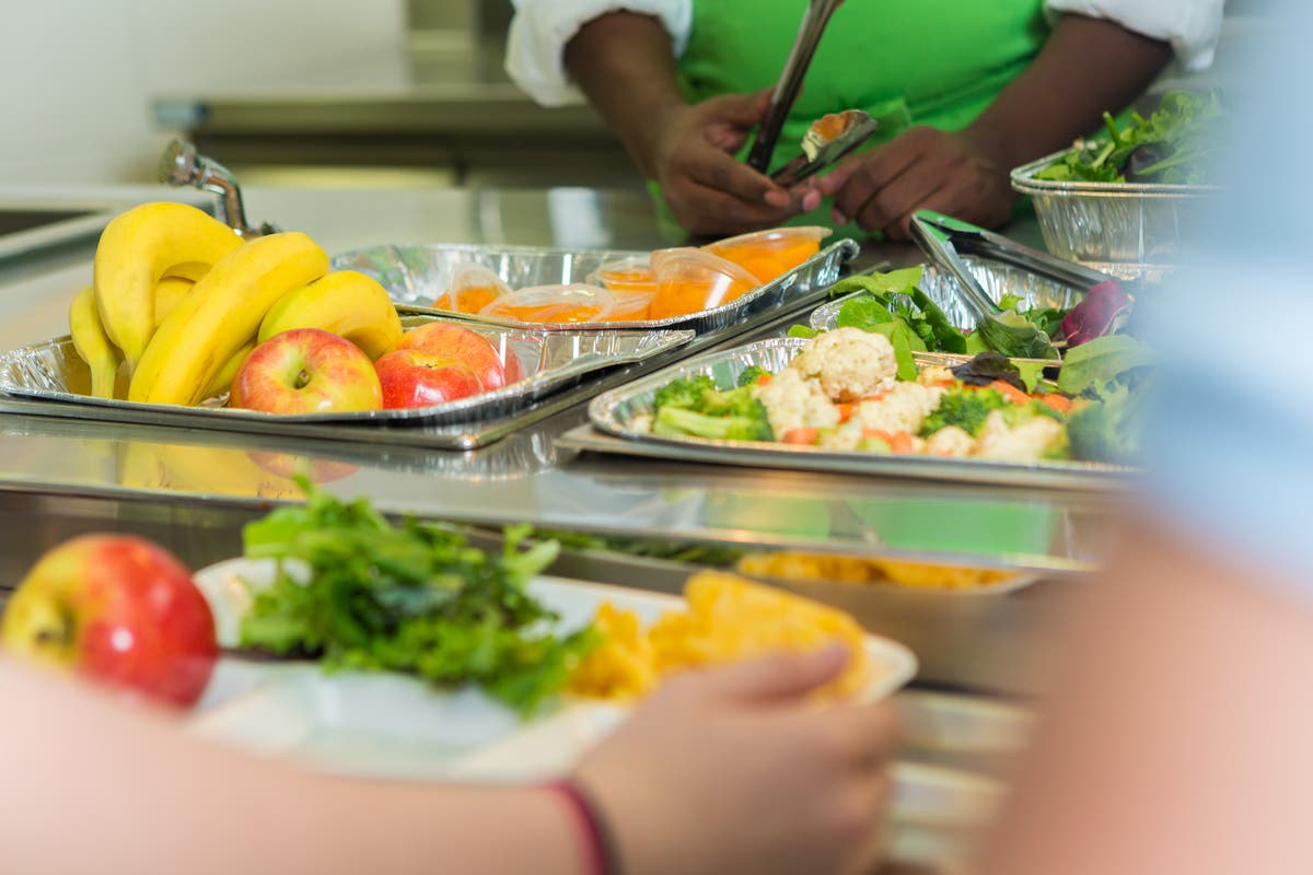 Image MPs call for 'right to food' to be put into law and new Minister for Food Security post