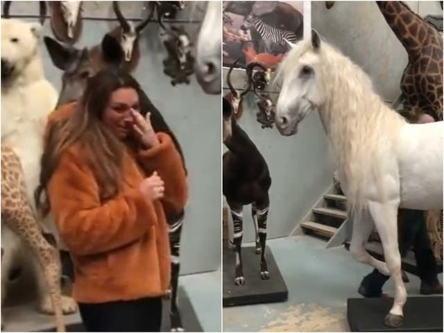 Luisa Zissman reacts to the unveiling of her stuffed horse, Madrono