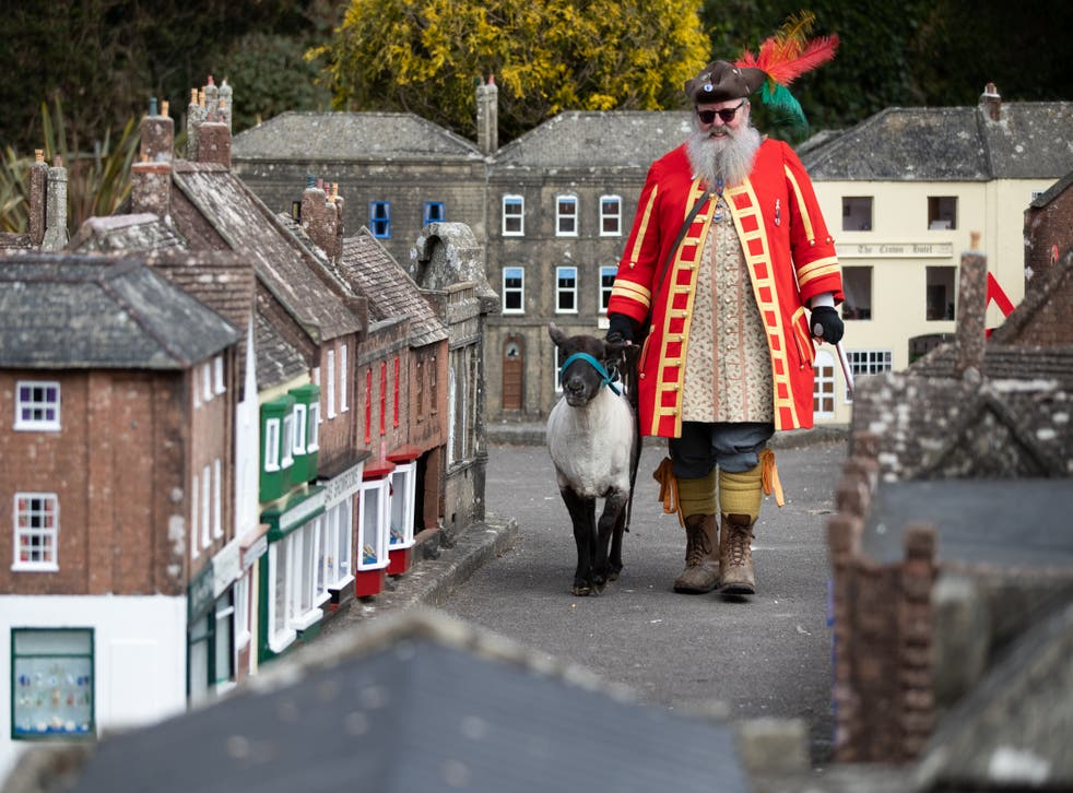 Chris Brown, the Town Crier and Mayor's Serjant of Wimborne Minster, in Dorset, exercises his right as an Honorary Freeman to drive sheep through Wimborne without charge, albeit through the Wimborne Model Town