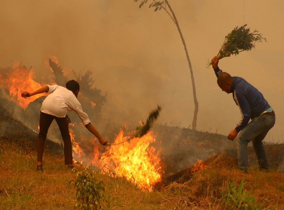 <p>Residents battle a fire in a forest in Baglung, about 275 km west of Kathmandu</p>