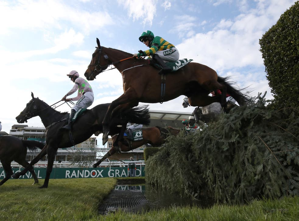The Long Mile was put down following the 2021 Grand National