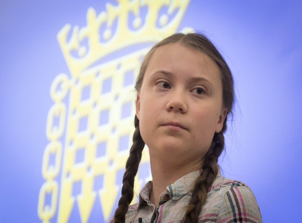 Greta Thunberg comments