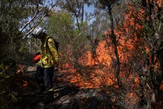 Australia wildfires 'warmed stratosphere by 1°C for six months'
