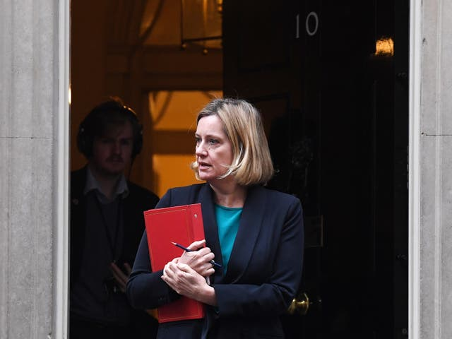 Former secretary of state for climate change Amber Rudd led the UK delegation at the Paris agreement