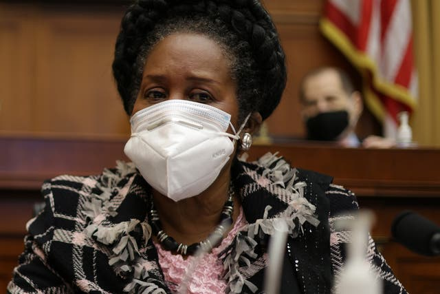 <p>Sheila Jackson Lee, a Democrat representative, presented the bill to the House committee</p>
