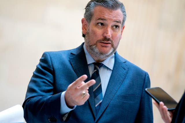 <p>Senator Ted Cruz complained that a Latina officer featured in a CIA promo video was 'a long way from Jason Bourne'</p>