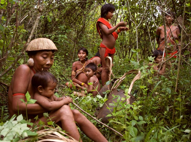 <p>If the bill is approved, it could represent an incalculable loss to the 305 indigenous ethnicities in Brazil</p>
