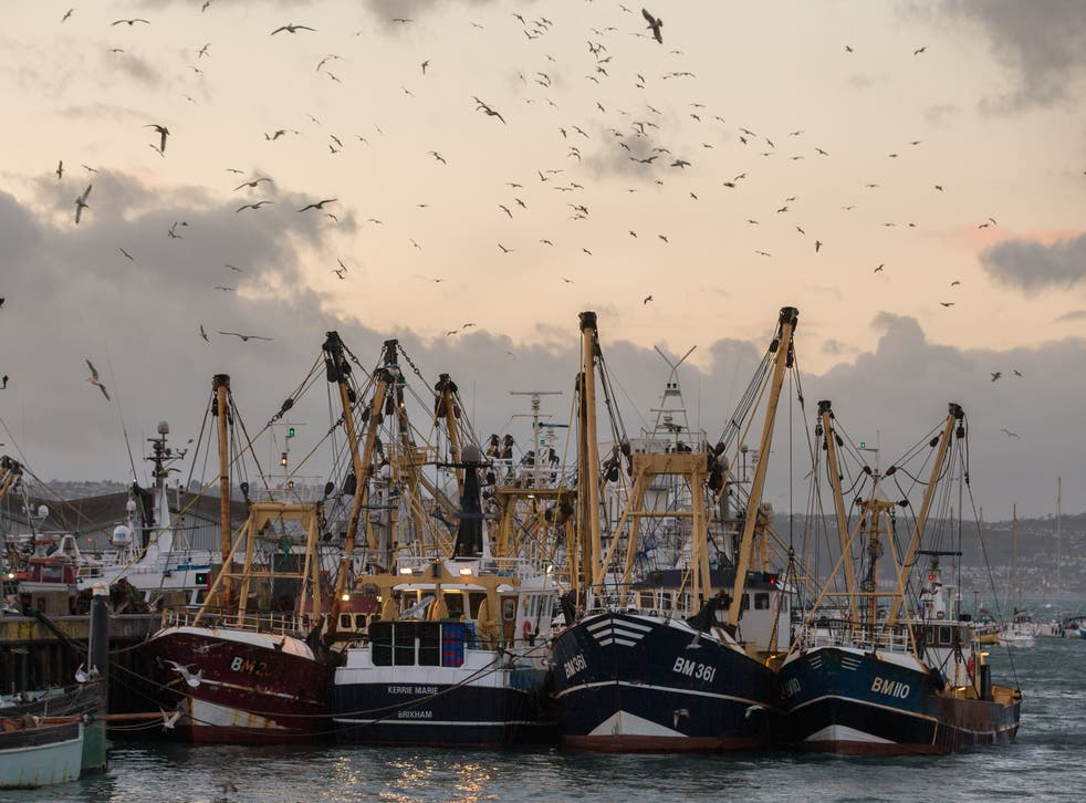 <p>Fishing methods have been brought into the spotlight following the release of Netflix's controversial Seaspiracy </p>