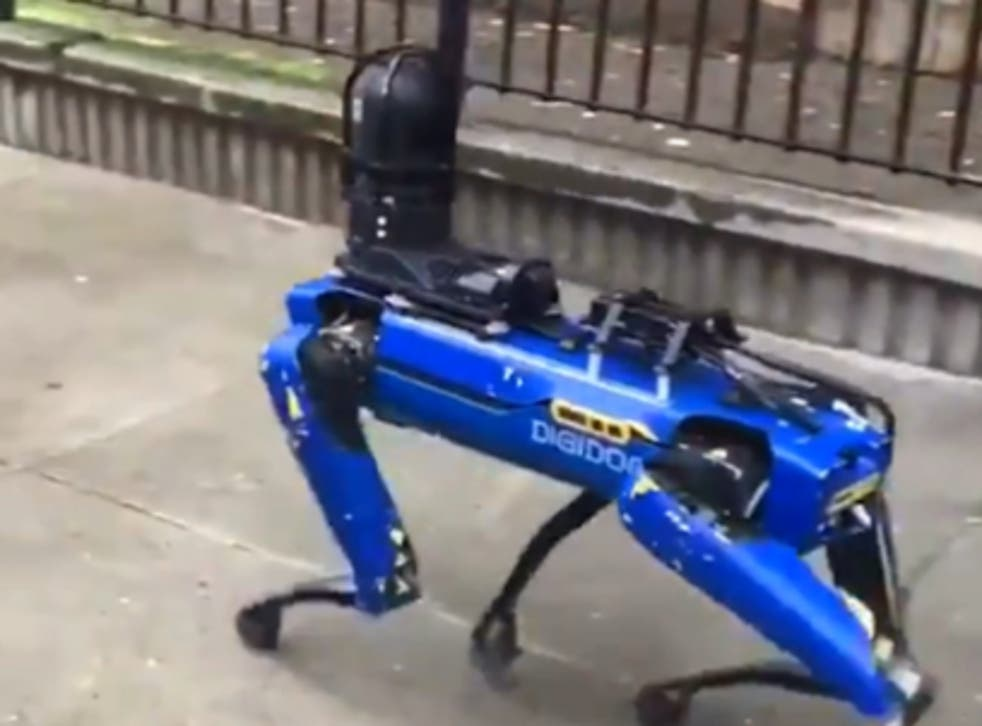 <p>A video of one of the uncanny creatures went viral this week on Twitter, with the robot dog unit 'Digidog' seen prowling past the crowd across a pavement</p>