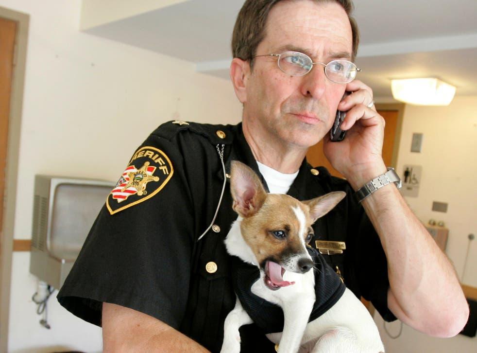 <p>Dan McClelland, 67, with his beloved chihuahua-rat terrier cross Midge</p>