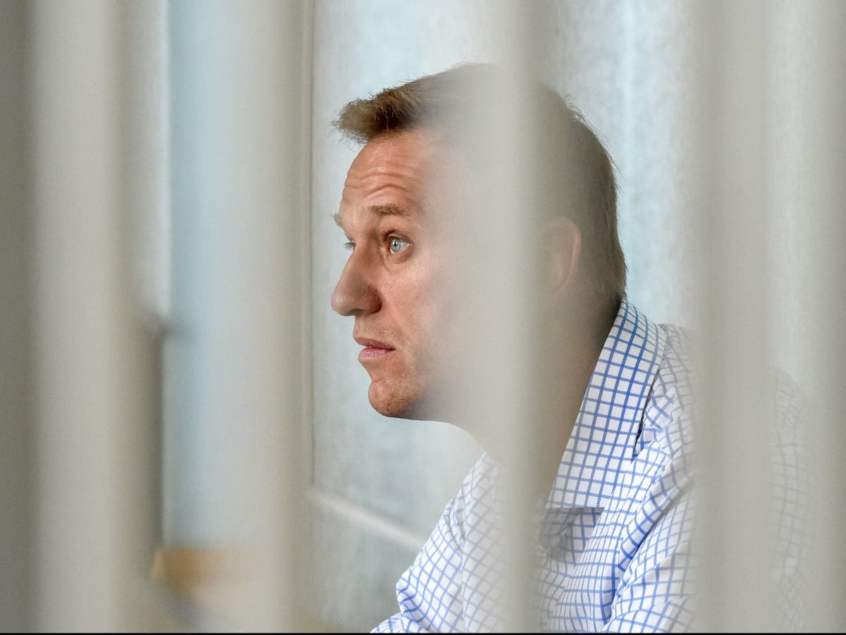 Putin critic Navalny 'will not be allowed to die in prison' says Russian ambassador as daughter pleads for doctor