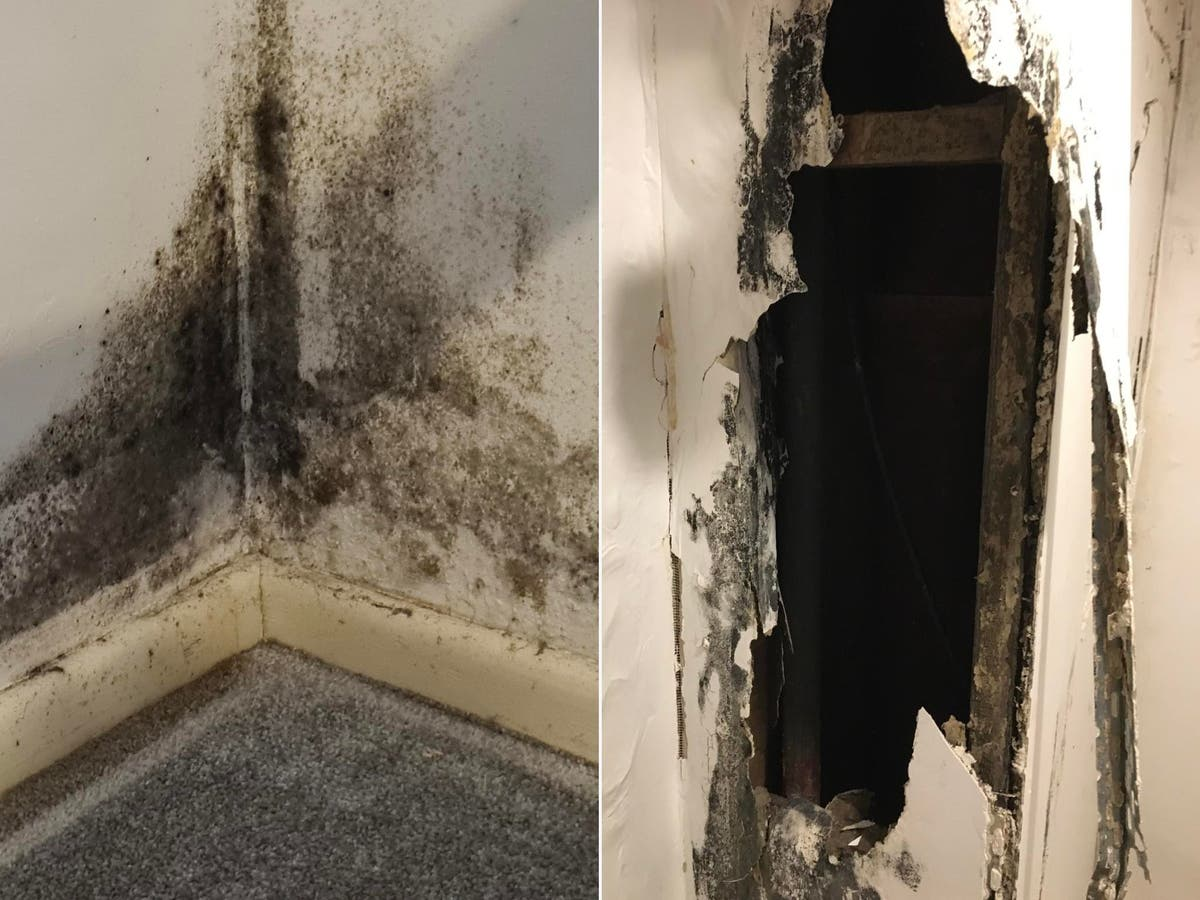 Two-fifths of renters in England 'have had to live in dangerous conditions for fear of eviction'