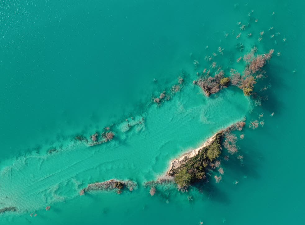 <p>An aerial view shows rotten trees in a toxic lake near the town of Yatagan, Turkey</p>