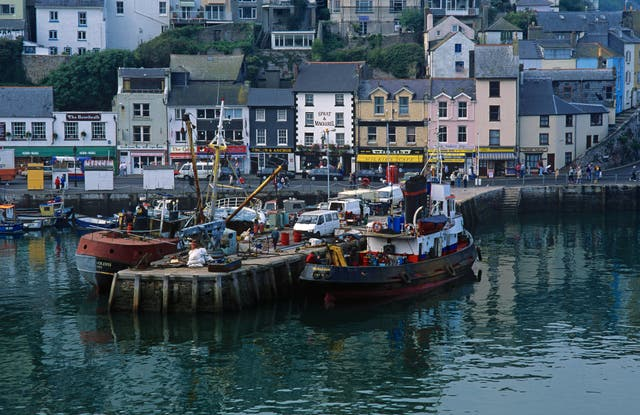 """Mr Perkes has said he was """"lied"""" to about the benefits of leaving the EU (pictured: Brixham harbour, in Devon)"""
