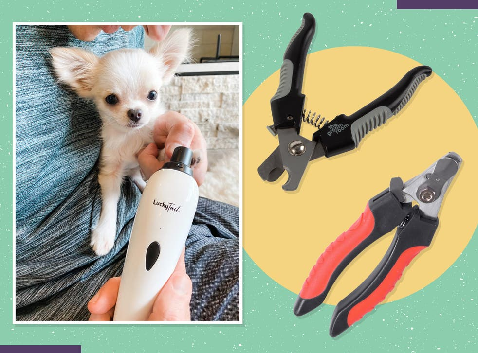<p>The best dog clippers are ones which are comfortable in the hand, easy to operate and have a blade which stays sharp with minimal maintenance</p>