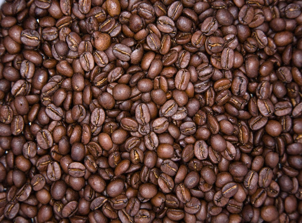 <p>The discovery of a rare coffee species that tolerates hotter and drier conditions could yield climate-resilient cuppas for decades to come</p>