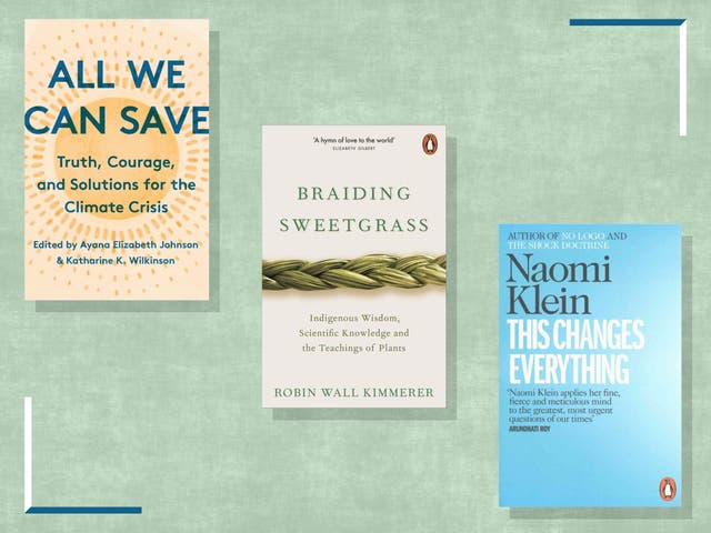 <p>These non-fiction tomes will arm you with the essential facts and offer hope about how we can achieve a just and clean energy future</p>