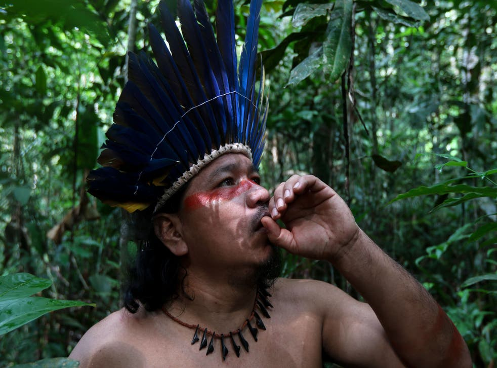 <p>Indigenous groups are the best guardians of nature and are key to protecting biodiversity</p>