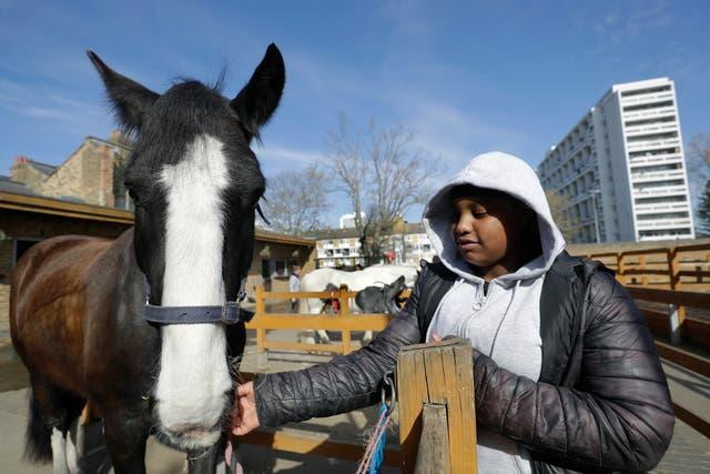 Britain London Riding School Photo Gallery