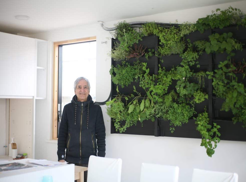 <p>'This is my trial run,' the 71-year-old beams in the front room of a completed show flat</p>