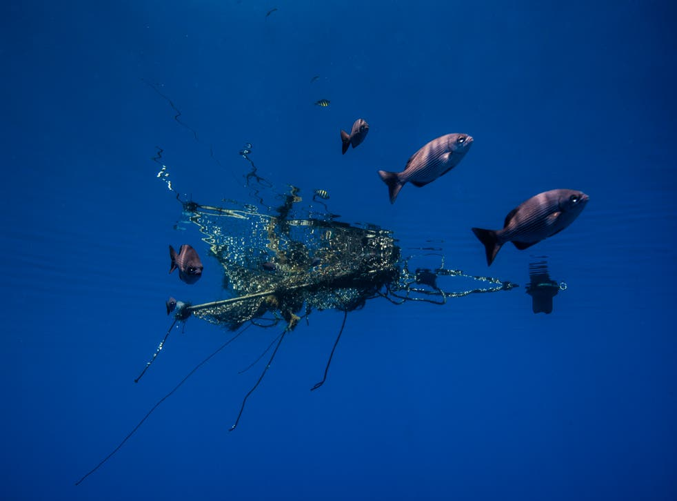 <p>'At least 10 per cent of ocean plastics comes from the fishing industry'</p>