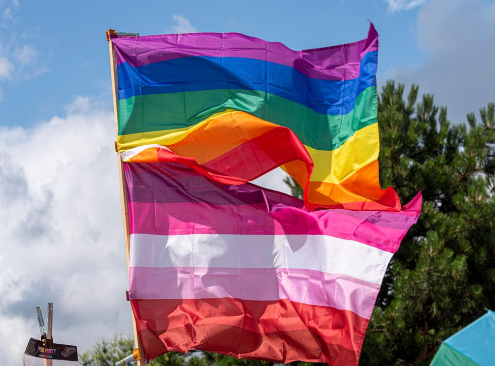The LGBT flag and the lesbian visibility flag