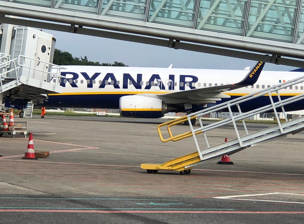 Frequent flyer: a Ryanair Boeing 737 at Lourdes airport in southwest France