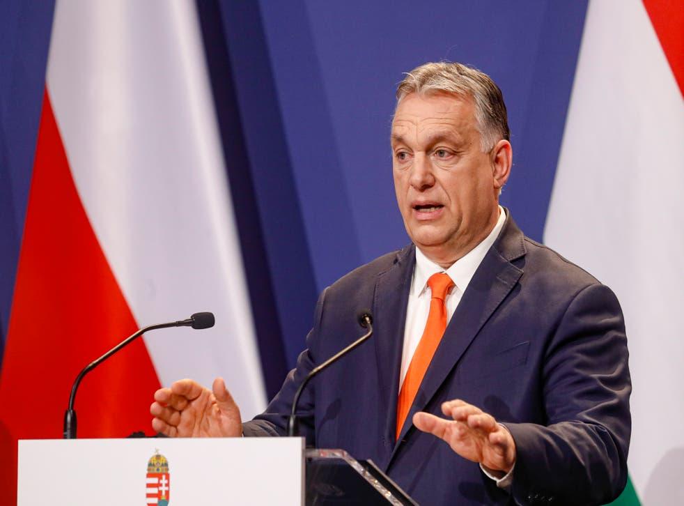 Hungary Higher Education