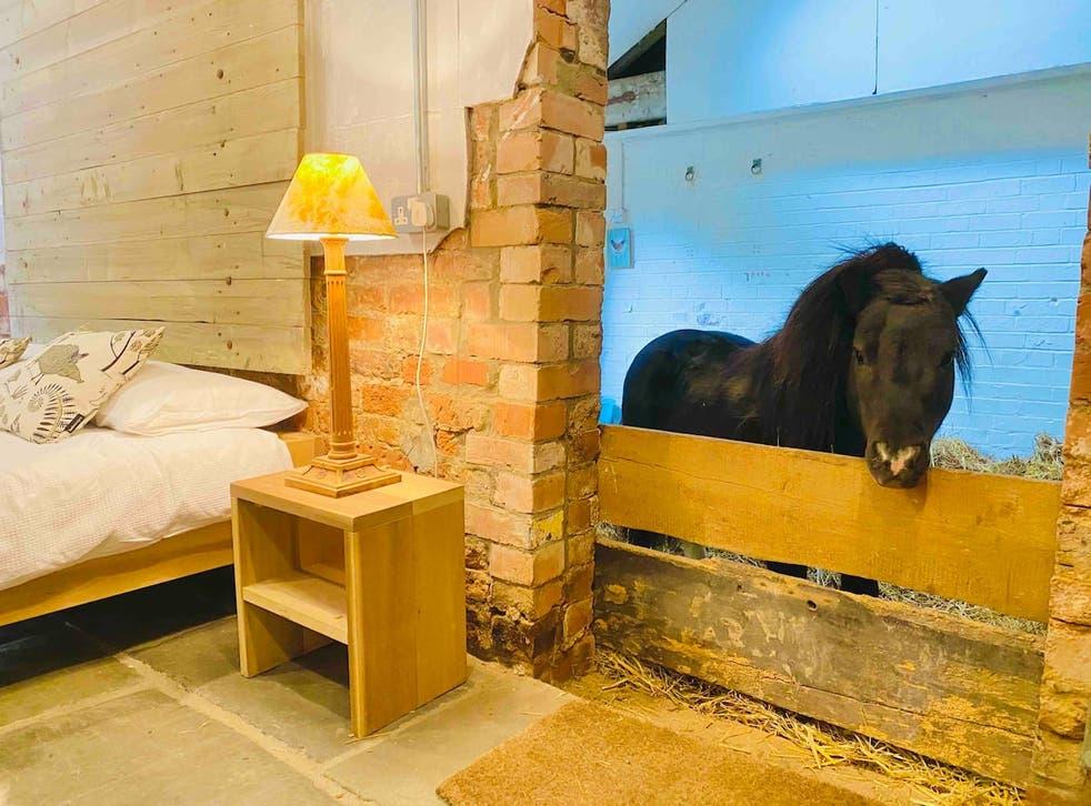 <p>Airbnb</p>