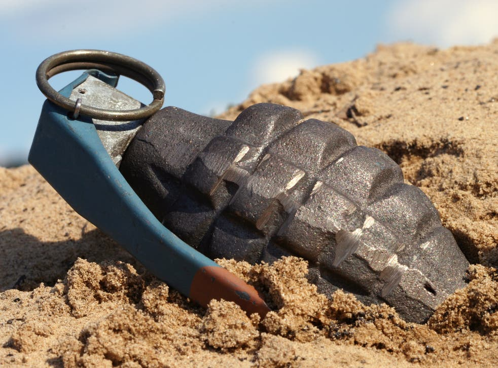<p>Authorities initally thought  that the device (not pictured) was an unexploded WWII hand grenade</p>