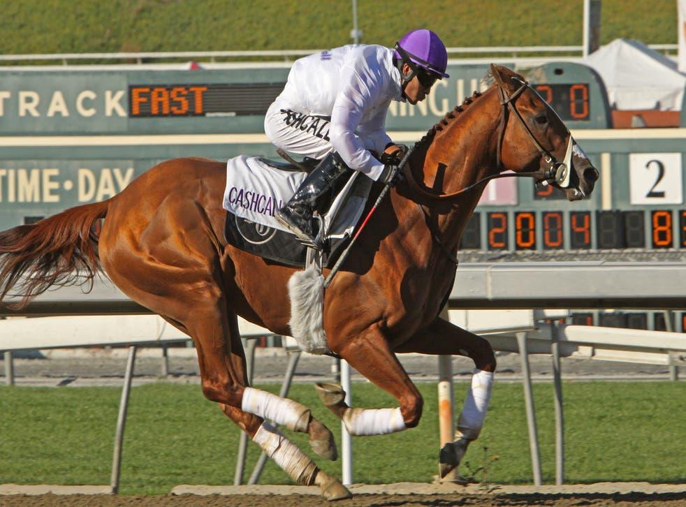 """<p>Mario Gutierrez sobre """"I'll Haven Another"""" en el Santa Anita Race Track el 3 de marzo de 2012 en Arcadia, Calif.</p>"""