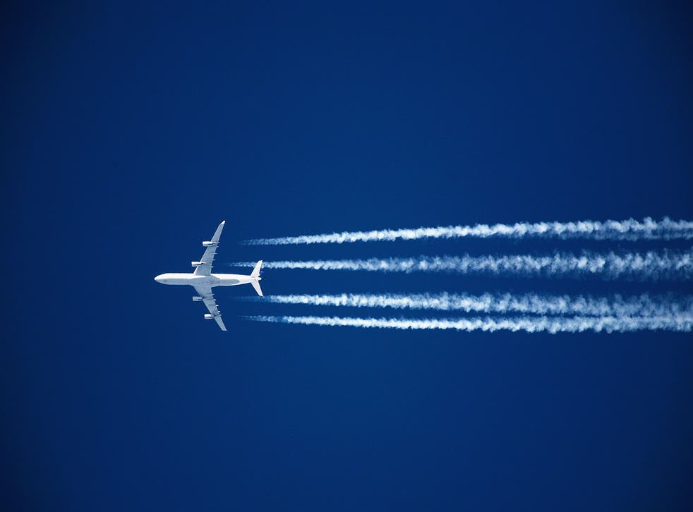 <p>This is the second time Nepal has suspended flights due to the pandemic </p>