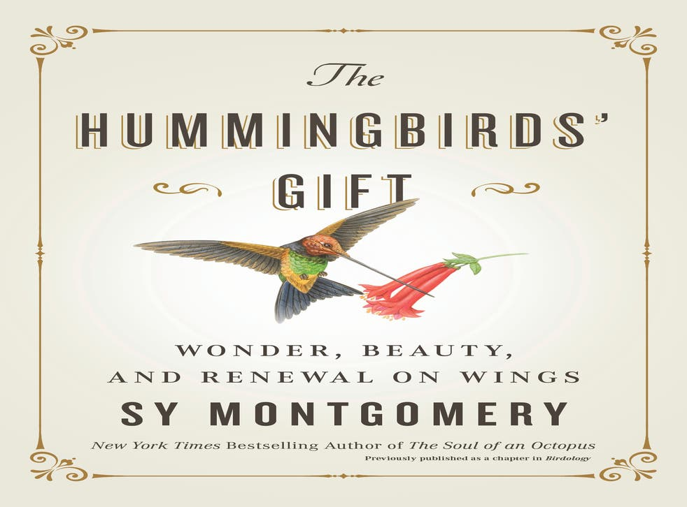Book Review - The Hummingbirds' Gift