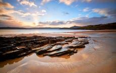 Rewild oceans to meet UK's net zero goals, campaigners say