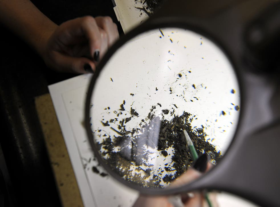 Paleontologist works on cleaning microfossil sorting in the Fishbowl lab of the Page Museum in Los Angeles