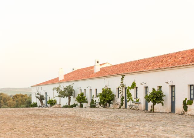 <p>Madonna has a farm in the Alentejo region</p>