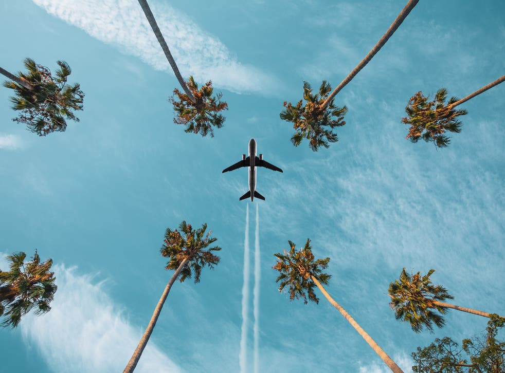 <p> 'While ministers pledge to get back to the normal of long-distance air travel they simultaneously pledge to include aviation in our national decarbonisation endeavour'</p>