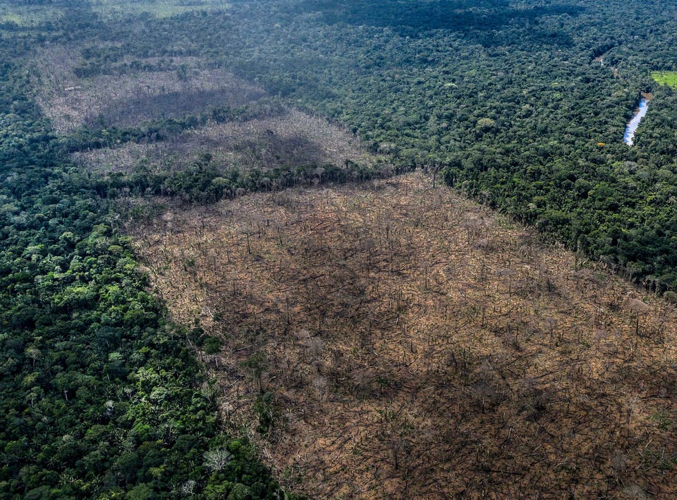 British supermarkets have threatened to boycott Brazilian products if the country passes a law which threatens the Amazon rainforest