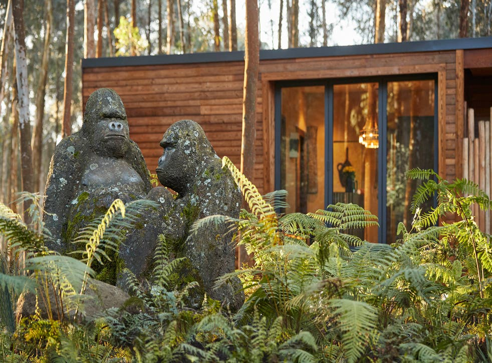 The Gorilla's Nest rooms (Phillip Lee-Harvey/PA)