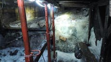 Climate crisis: Melting glacier reveals First World War cave shelter and trove of artefacts