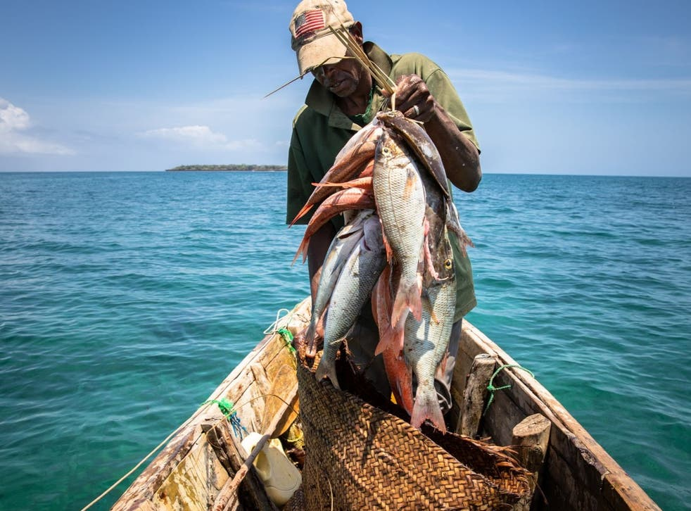 No-take marine protected areas increased the growth of fish populations by 42 per cent when fishing was unsustainable in surrounding areas